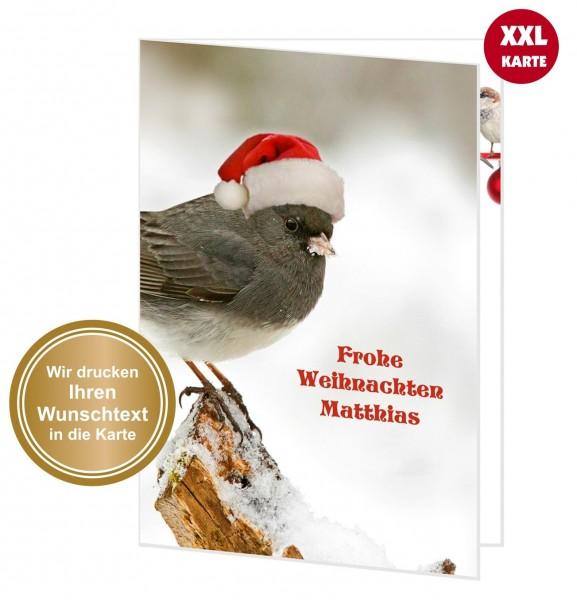 Xxl Weihnachtskarte Süßer Weihnachtsvogel